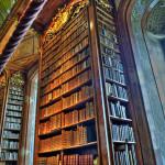 High bookshelf in Vienna National Library