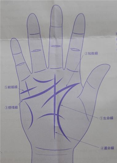 Computer palm reading printout