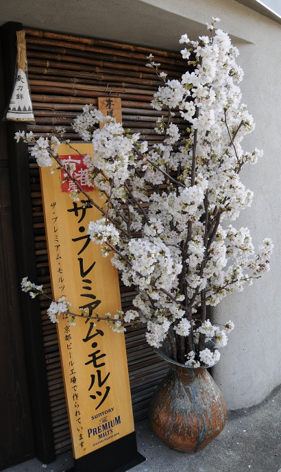 cherry blossoms in a vase