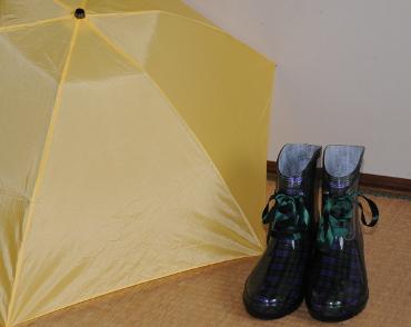 rainboots and umbrella
