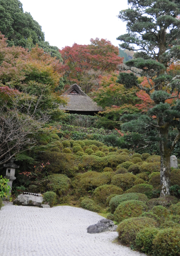 garden at Kompuku-ji temple