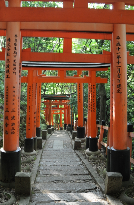 Torii on the way down Inari hill
