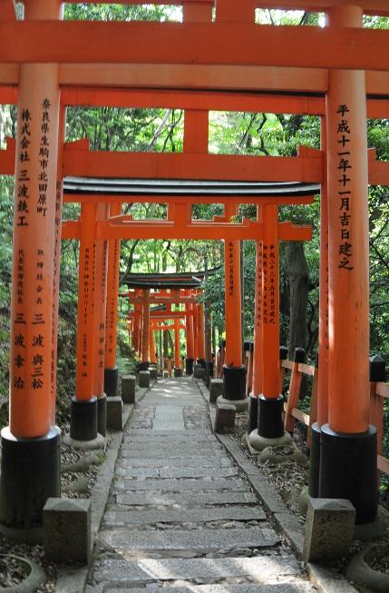 Torii on the way down Inari hill