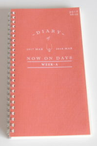 My Diary for 1917