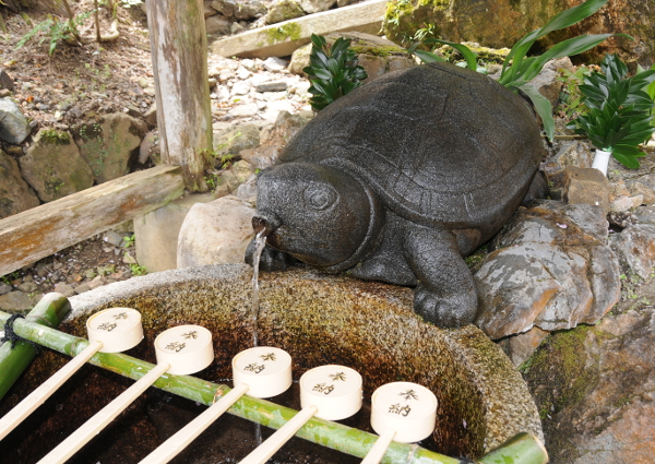 Kame-no-i sacred turtle well