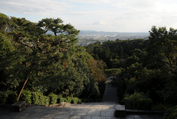 View from the Tomb of the Meiji Emperor
