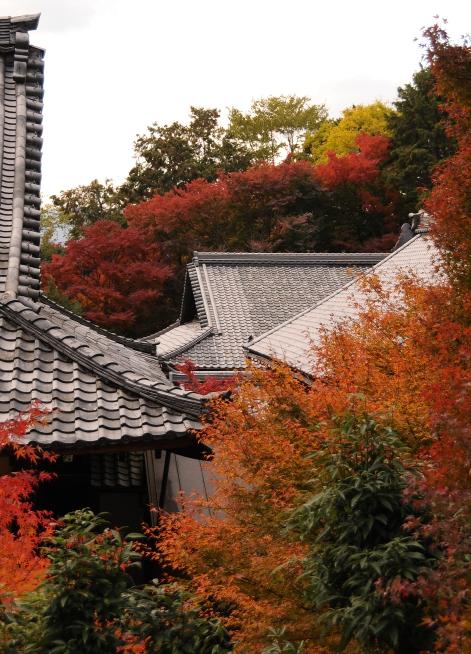 roofs in nanzen-ji temple