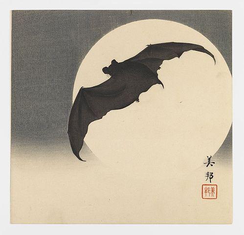 Bat before the Moon by Biho Takashi