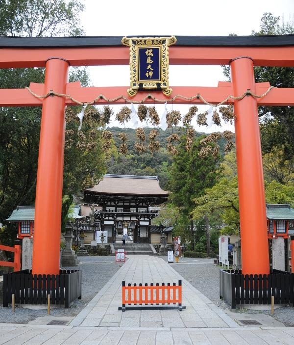 Matsunoo Taisha - Torii and Romon Gate
